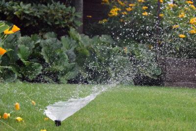Wynurzalne zraszacze na trawniku