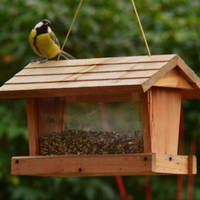 Karmnik tradycyjny z zasobnikiem dla sikorek i innych zimujących ptaków