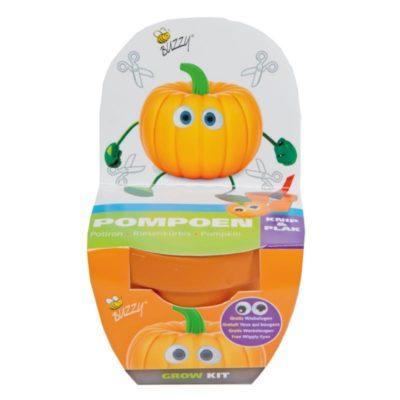 zestaw do uprawy dynia w doniczce dla dzieci świetna pouczająca zabawa