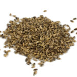 ostropest zdrowe ziarna na wątrobę idealne dla szczygłów ekologiczne