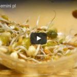 Kiełkownica słoikowa kiełki w 5 dni film instruktażowy