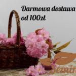 koszyk-logoSemini