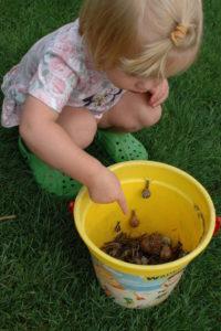 Zbieranie ślimaków to zabawa pouczająca
