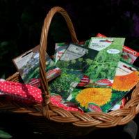 Nasiona ziół i przypraw