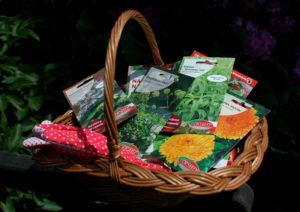 Nasiona ziół Torseed w wiklinowym koszyku
