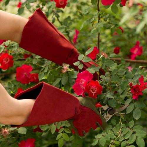 Rękawice do róż, model niedostępny w Polsce