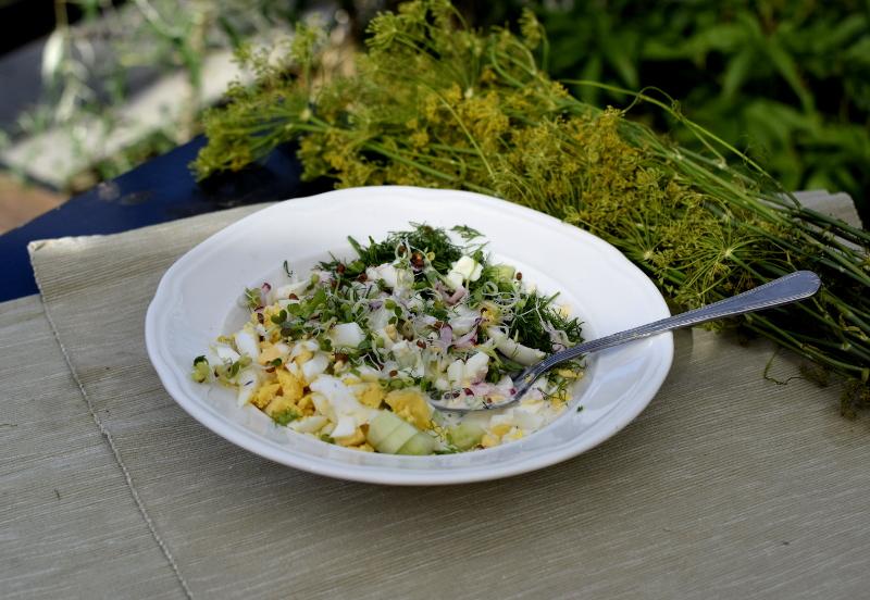 Sałatka z kiełków rzodkiewki - wiosenny smak, idealna konsystencja