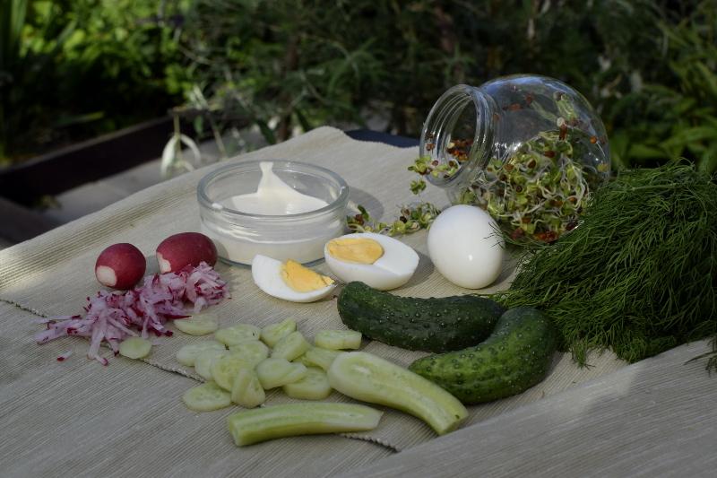 Sałatka z kiełkami rzodkiewki - świeże, wiosenne składniki