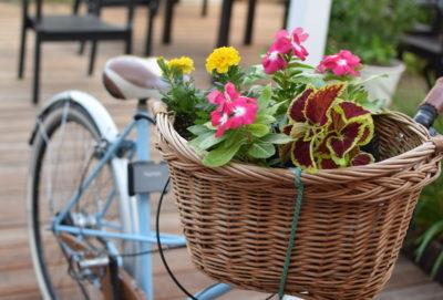 Rower z koszem kwiatów