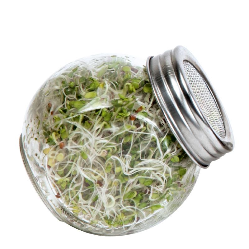 Kiełkownica słoikowa Semini, szklany słoik na kiełki z pokrywką perforowaną.