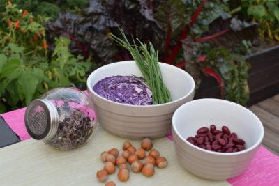 Produkty sezonowe są najzdrowsze, pyszne i świeże: kapusta czerwona, orzechy, szczypiorek, kiełki i fasola