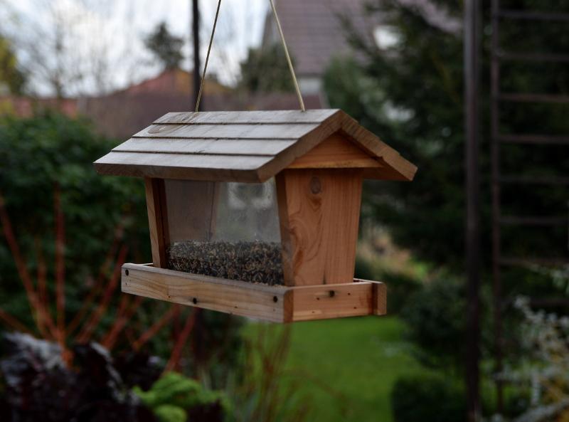 Jak Zawiesić Karmnik Dla Ptaków Bezpiecznie I Wygodnie Semini