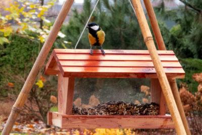 Jak powiesić karmnik dla ptaków? Oto konstrukcja z tyczek bambusowych.