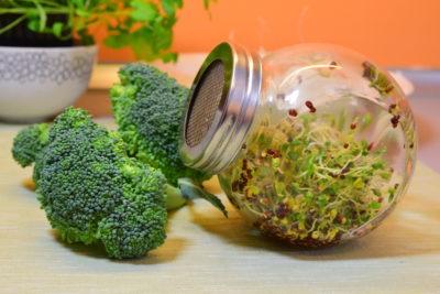 Kiełki brokuła w kiełkownicy słoikowej w kuchni