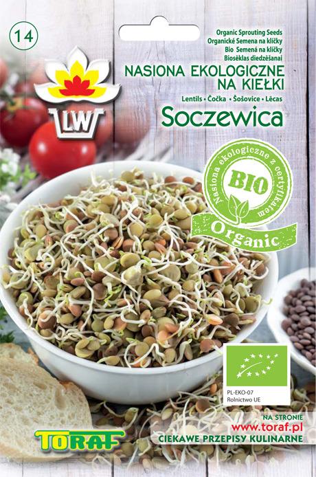 Soczewica ekologiczne nasiona na kiełki bio organic