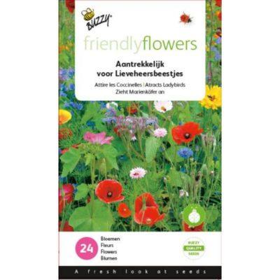 Nasiona kwiatów dla biedronek