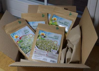 Rodzaje nasion na kiełki
