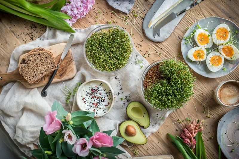 Kiedy posiać rzeżuchę, aby podczas Wielkanocnego śniadania tak wyglądała?