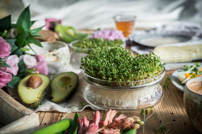 Rzeżucha wiosną dostarcza witamin jak nic innego, nie ma o tej porze sałaty ani żadnych warzyw liściowych.