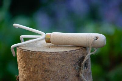 Pazurki ogrodnicze białe