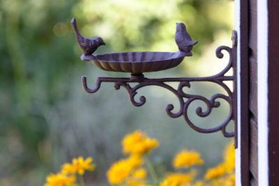 Solidne poidełko dla ptaków