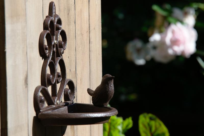 Piękne poidełko dla ptaków