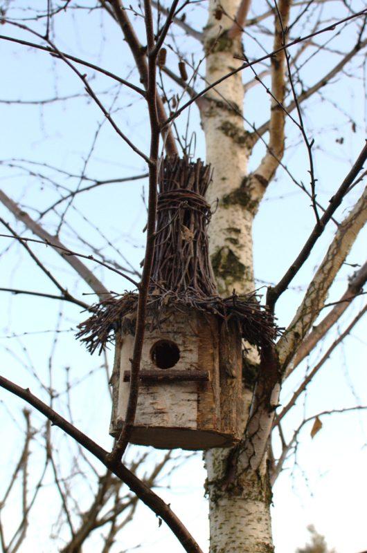 Na drzewie brzozowa naturalna budka lęgowa ręcznie wykonana z daszkiem z chrustu polska produkcja