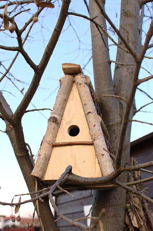 budka lęgowa dla małych ptaków sikorek z brzozowego drewna trójkątna polska produkcja ręcznie wykonana