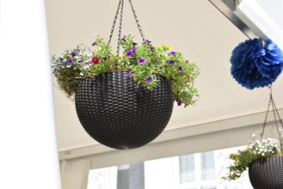 Kwiaty w wiszącej donicy