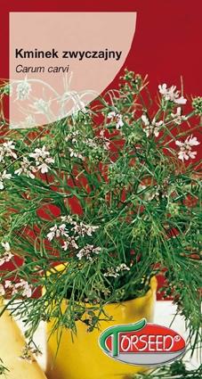 Nasiona kminku zwyczajnego kminek