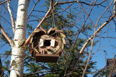 budka lęgowa LOVE BIRDS urocza, naturalny wygląd, ekologiczna i przyjazna przyrodzie ozdoba ogrodu