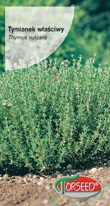 Opakowanie nasiona tymianku Torseed