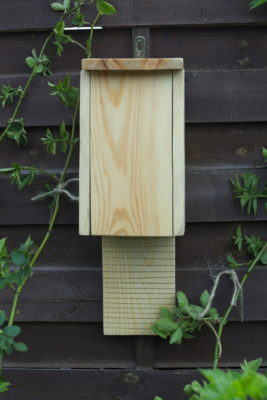 Budka dla nietoperzy drewniana w ogrodzie