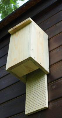 Szczelina w dnie budki dla nietoperzy w ogrodzie