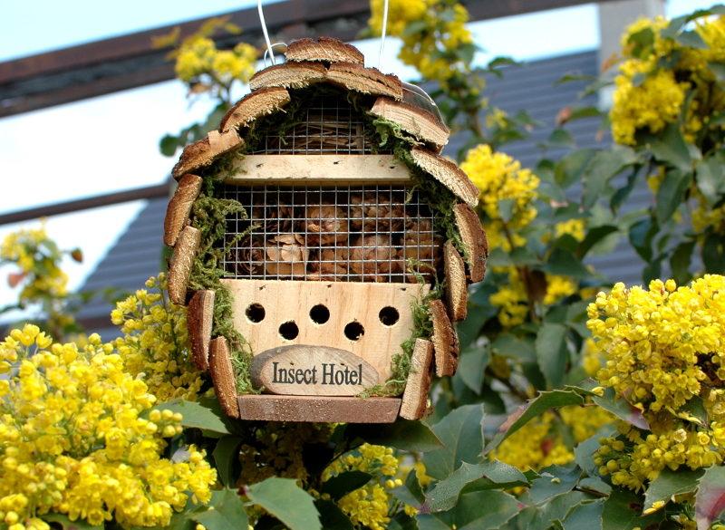 Domek dla owadów - Insect Hotel, z sosny, 3 poziomy dla różnych owadów