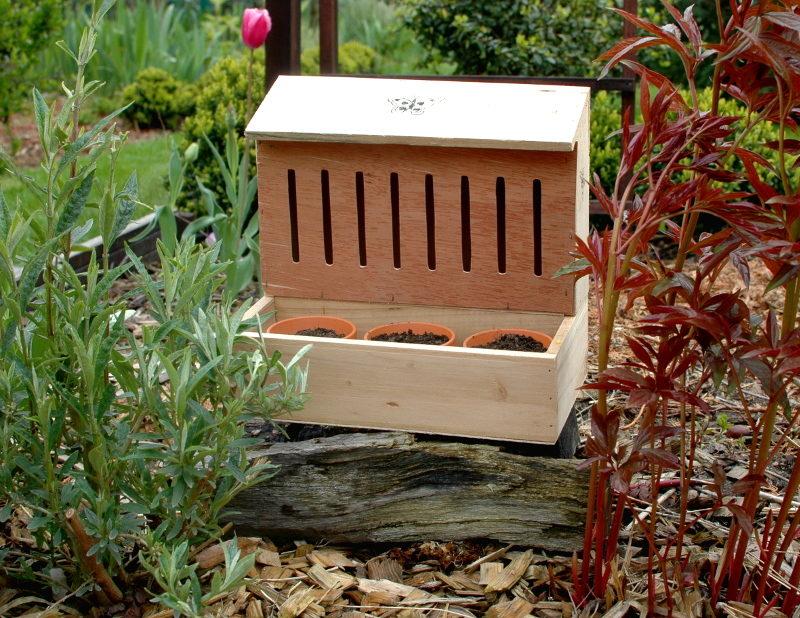 Domek dla motyli drewniany z półeczką