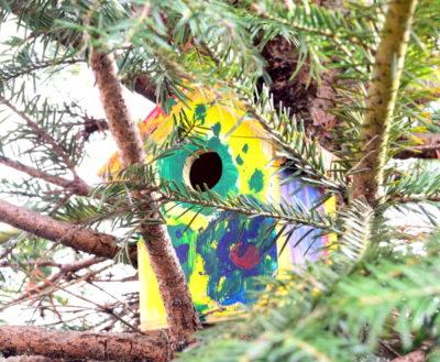 Pomalowany domek wisi już na drzewie