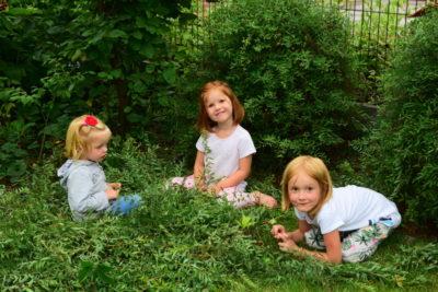 Dzieci w ogrodzie: gałęzie po obcinaniu tawuły też im się przydadzą!