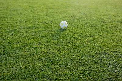 Wielki trawnik jak boisko