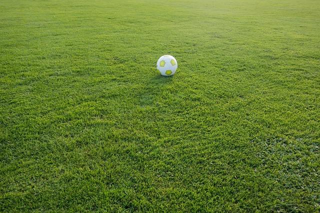 Trawnik dla dzieci wielki jak boisko
