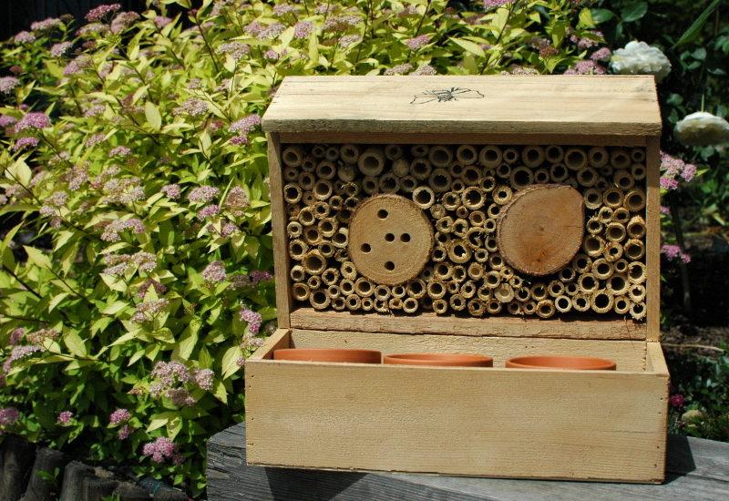 Gniazdo dla pszczół z łąką kwietną