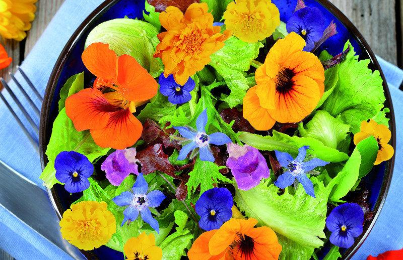 nasiona kwiatów jadalnych gotowe