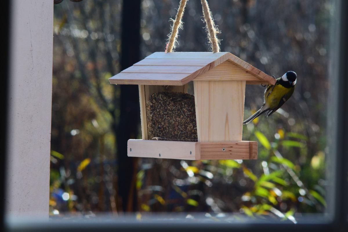 Karmnik Tradycyjny Z Zasobnikiem Dla Ptaków Semini