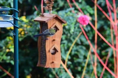 Karmnik z zasobnikiem pionowy drewniany sikorka bogatka