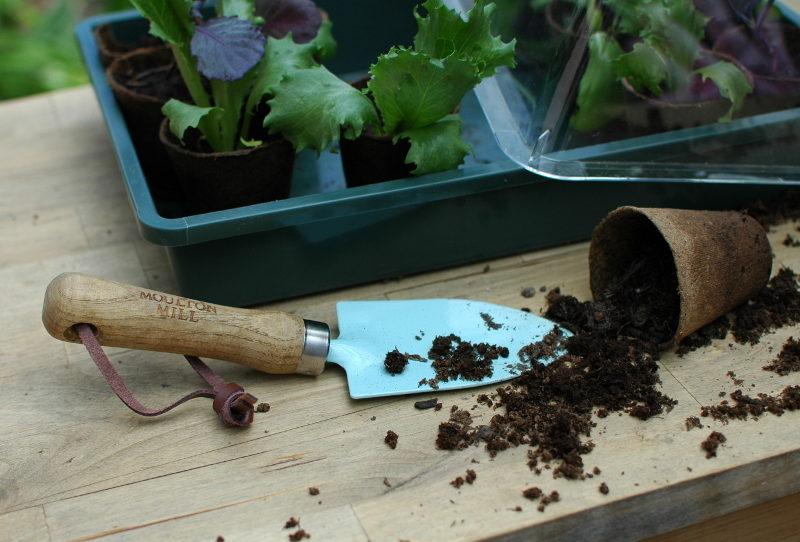 Łopatka z zestawu designerskich narzędzi ogrodniczych Moulton Milll, doniczki torfowe, rozsada warzyw.
