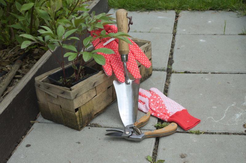 Łopatka Moulton Mill, sekator Moulton Mill i czerwone nakrapiane rękawice do ogrodu
