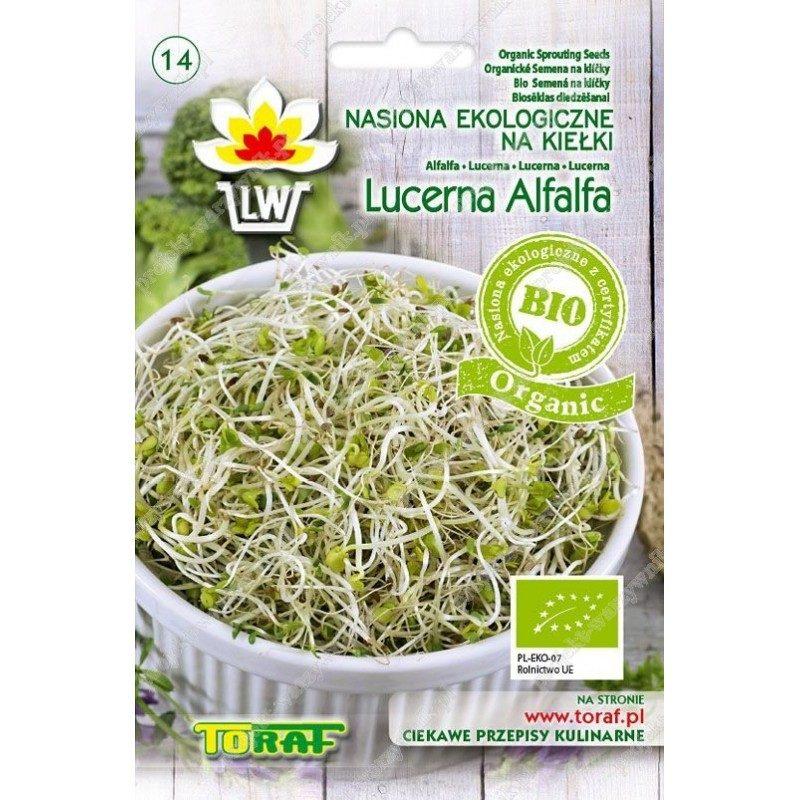 Lucerna ekologiczne nasiona na kiełki bio organic