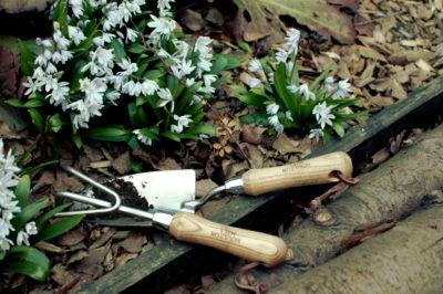 pazurki ogrodnicze i łopatka stal nierdzewna leżące na rabacie