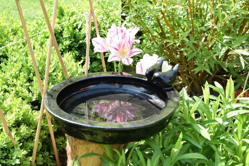 Poidełko dla ptaszków ceramiczne do stawiania czarne z tulipanami