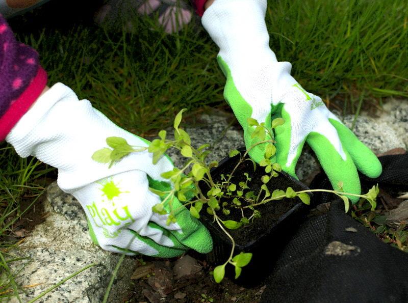 Rękawice ogrodnicze dla dzieci szkolnych nadają się do prac w ziemi